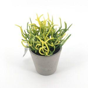NWT! Fauz Succulent Grass Plant Decor
